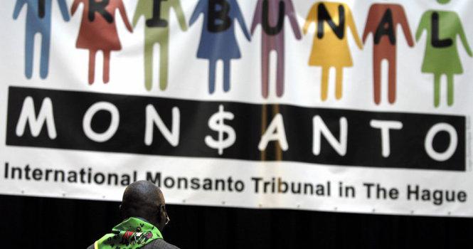 Cáo buộc liên quan đến Tập đoàn hóa chất đa quốc gia Monsanto của Mỹ